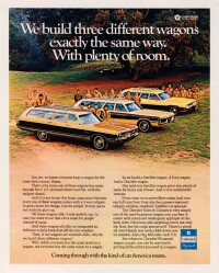 I wonder if all these good Scouts crawled out of the station wagons...